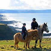 Horse riding Bude