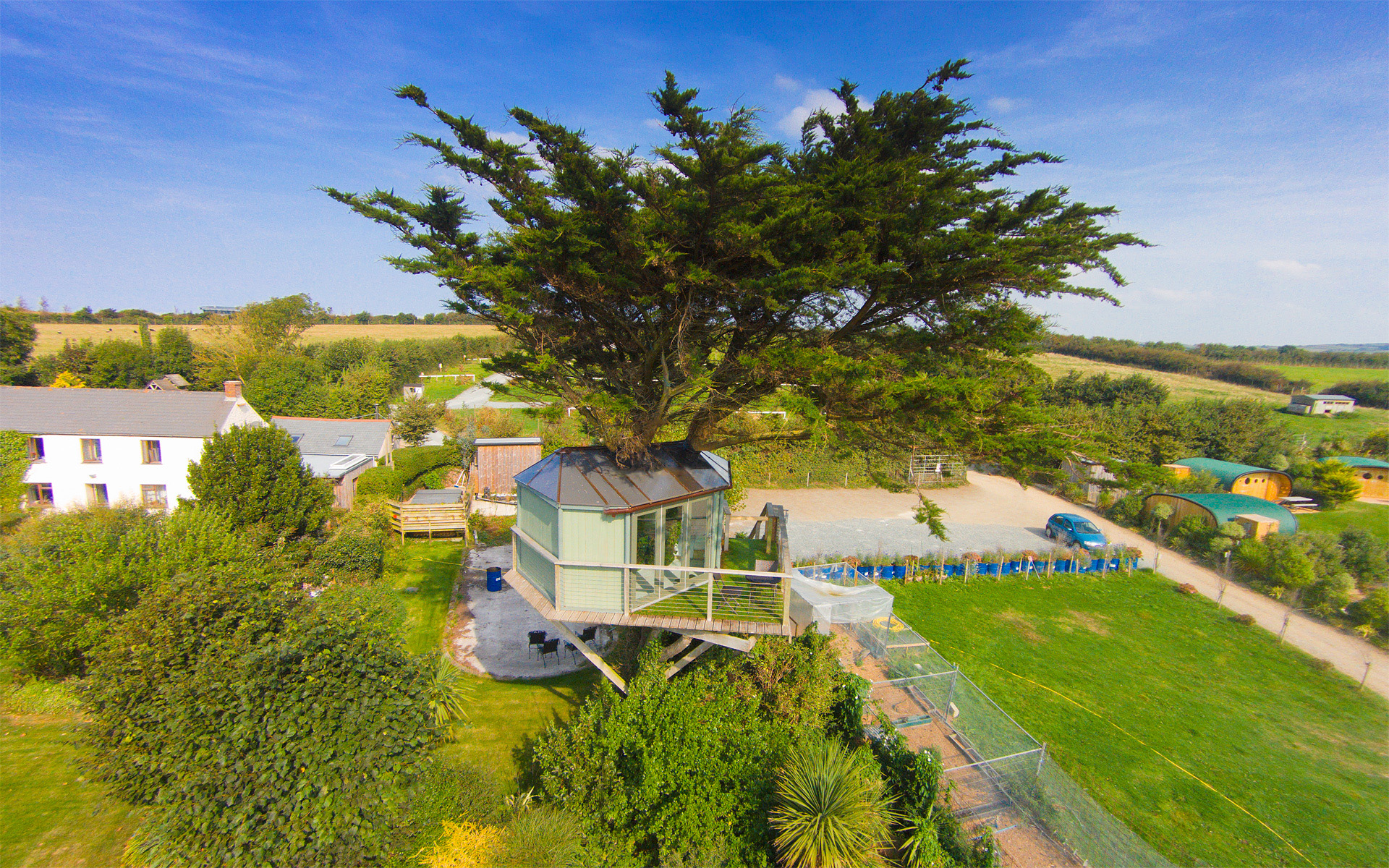 tree house pictures. atlantic treehouse. dji00158 tree house pictures